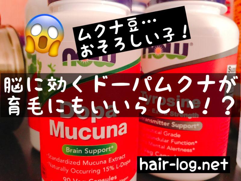 【植毛手術後88日目】脳に効くドーパムクナ(ムクナ豆)が育毛にもいいらしい!?